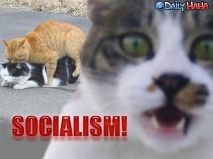 OMG SOCIALISM!!!