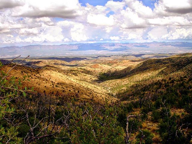 "Looking down from somewhere on Mount Lemmon.  I think this is what ""sun dappled"" means.  Shot on July 2007.  #az #arizona #mountlemmon #mtlemmon #landscape #landscapes #landscapephotography #nature #naturephotography #scenery #amateurphotography #amateurphotographer #photography #photographer"