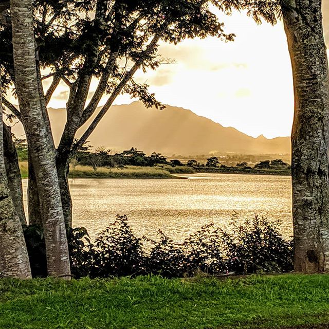 Sunset on a lake at the Dole plantation.  #hawaii #doleplantation #dole #scenery #nature #sceneryphotography #sunset #goldenhour #photographer #photography #amateurphotographer #amateurphotography #mobilephotographer #mobilephotography